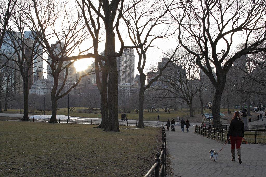 New-York-Central-Park-01.jpg